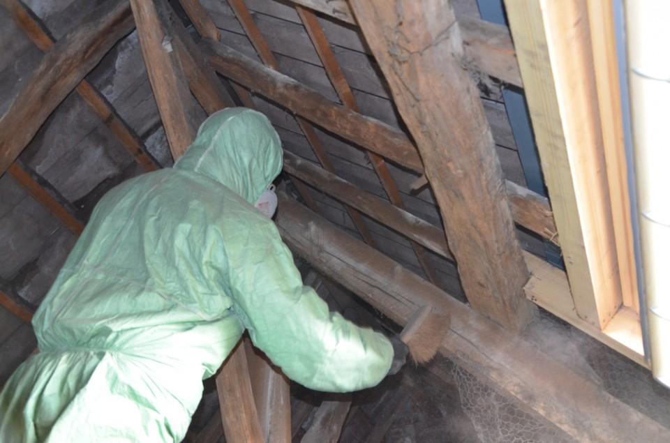 travaux préparatoires pour traitement du bois
